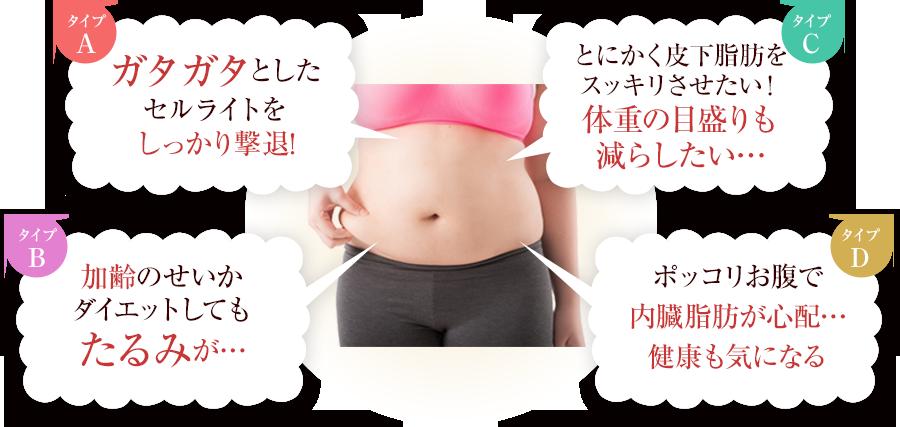 脂肪のタイプ別にお悩みを解決!!